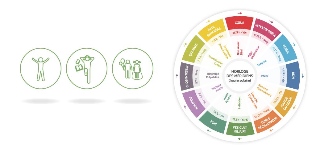 Aperçu des pictos du public visé (adultes / adolescents / enfants) + roue des émotions, page kinésiologie - CorpoWell - 2019